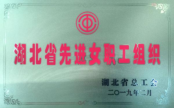 湖北省先进女职工组织