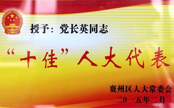 """2015.2-""""十佳""""人大代表"""